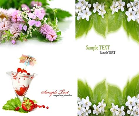 image for flowers flower images free stock photos 11 118 free