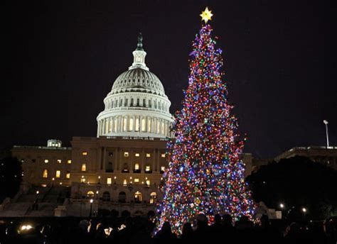 christmas trees around the world slideshow trees around the world send us yours photos poll
