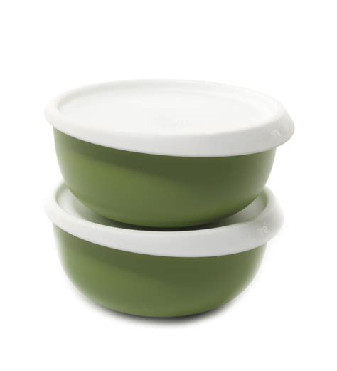 Tupperware Blossom Bowl tupperware blossom bowl 550 ml set of 2 best deals with price comparison shopping price