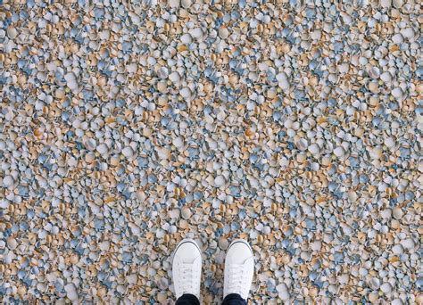 Seashell   Atrafloor