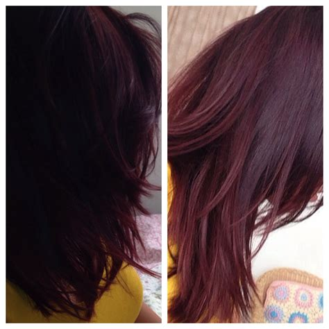 what hair dye color is plum brown gallery for gt dark brown plum hair color