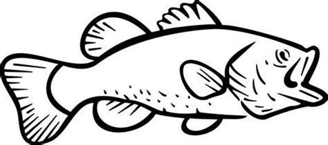river fish coloring pages river bass fish coloring pages best place to color