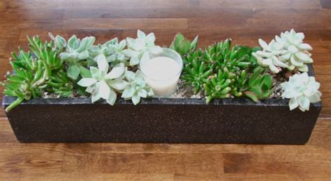 picture of diy table top succulent planter