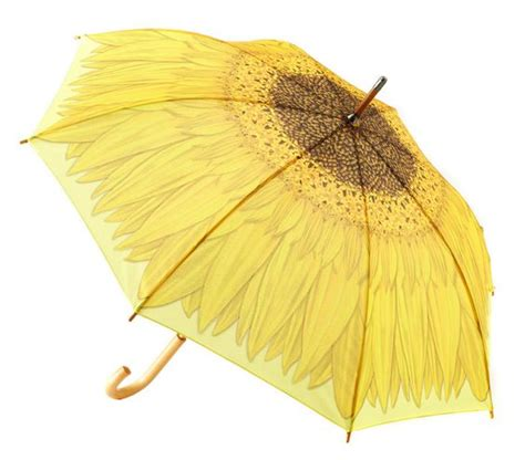 8 Adorable Umbrellas by The 25 Best Umbrellas Ideas On Diy