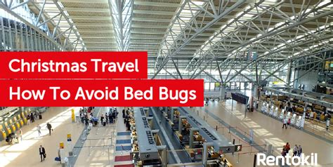 How To Prevent Bed Bugs by Bed Bug Prevention Archives Debugged