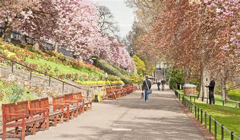 value 9 cherry tree park edinburgh memorial seats in princes gardens edinburgh editorial stock photo image of park