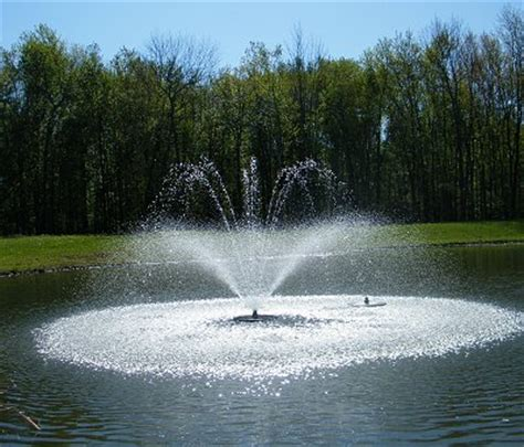 teich springbrunnen floating pond fountains decorative heads about