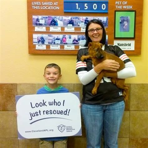 petsmart adoption petsmart charities uses retail to pair pets in need with fur homes kimco realty