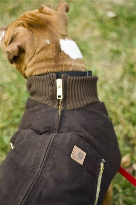 jacket for dogs 25 best ideas about jacket on coats coat pattern and