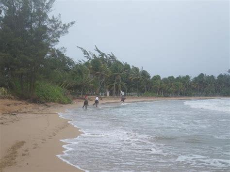 catamaran spread eagle ii fajardo pr 10 things to do near wyndham grand rio mar beach resort spa