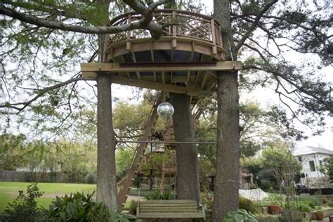 todd graves house raising cane s owner reflects on his new treehouse the daily reveille lsunow com