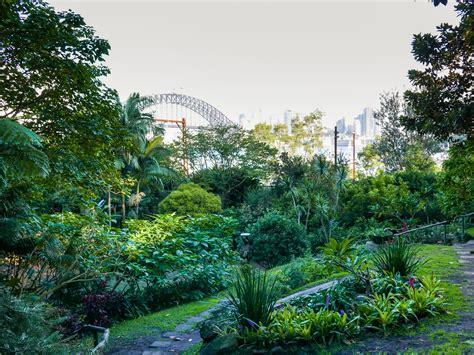 wendys winter garden sydney in the best gardens to visit ovolo hotels