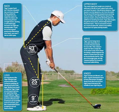golf swing address good golf posture how to address the golf ball page 7