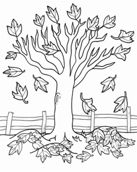 pumpkin tree coloring page activitati pentru copii pictează toamna copac cu frunzele