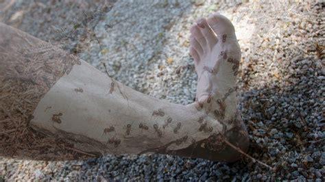 kribbeln im fuß beim liegen ameisenkribbeln ameisenlaufen kribbeln in armen oder