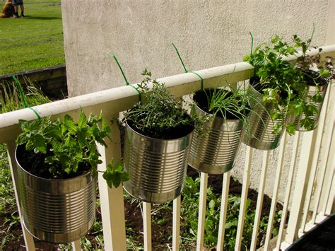 Balcony Herb Planter by Balcony Herb Garden Ideas Images