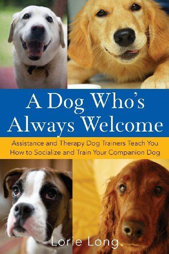 how to get trained for therapy 25 b 228 sta therapy id 233 erna p 229 s 228 llskapshund tips