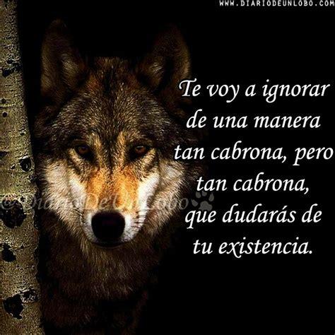 Imagenes De Lobos Tristes | im 225 genes de lobos con frases im 225 genes con frases citas