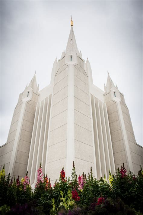 searching for sanviejo notes to my younger self books san diego california temple spires