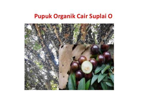Jual K Bioboost Pupuk Organik Cair Hayati Di Mojokerto jual pupuk organik cair 081281000409