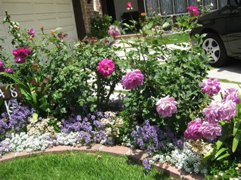 Garden Flower Borders Garden Ideas Pictureselevated Garden Plans Gardening Equipment