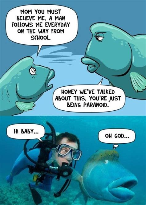 Scuba Diving Meme - 50 best scuba related cartoons images on pinterest