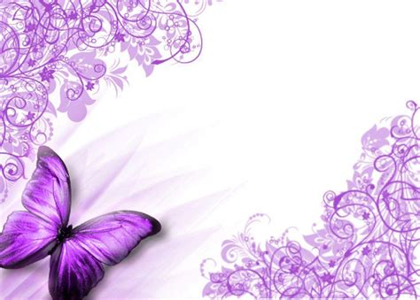 design background butterfly purple butterfly backgrounds wallpaper cave