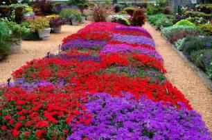 Small Backyard Landscape Ideas Jardim De Flores O Meu Jardim