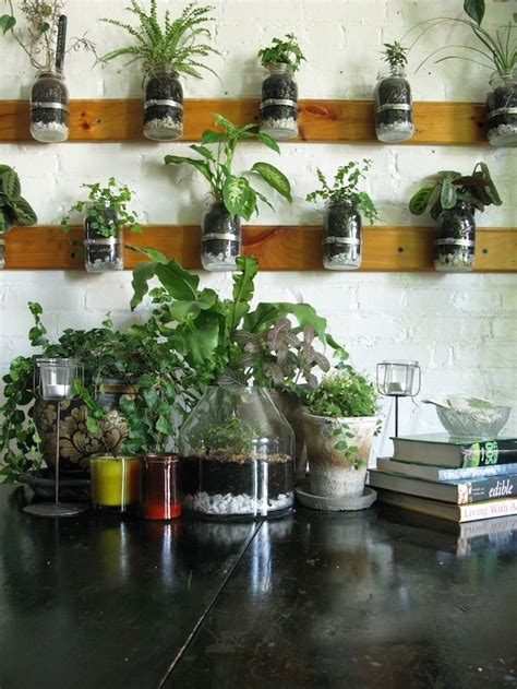 Indoor Garden And Herb Solutions Canadian Off The Grid Jar Herb Garden Wall