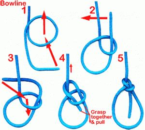sailing knots learn these 3 essential knots now