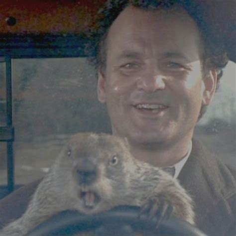 groundhog day driving papatv liveplay punxsutawney pinball with bonus