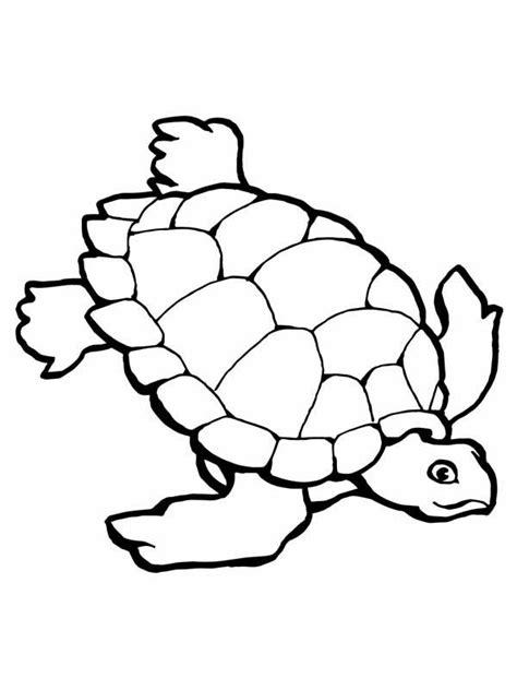 sea turtle coloring page free coloring pages sea turtle printables az coloring pages