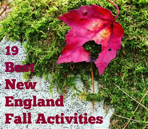 19 of new england s best fall activities the daily adventures of me