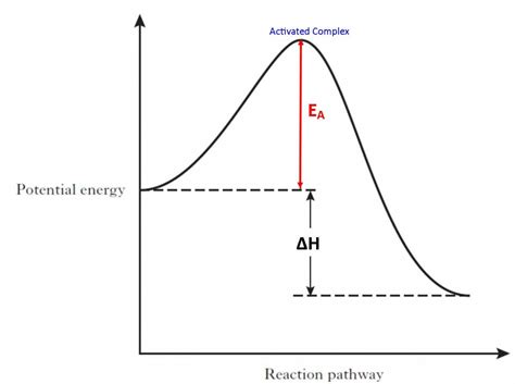 activation energy article enzymes khan academy