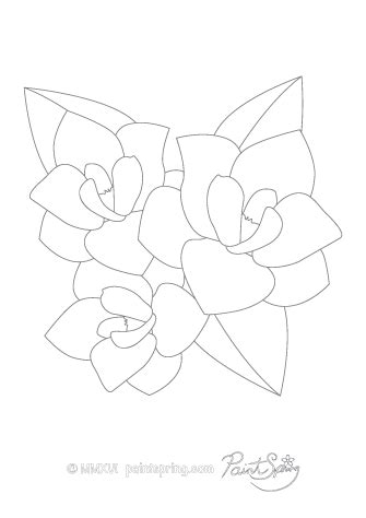 coloring pages of magnolia flowers printable flower coloring book get 3 free pages