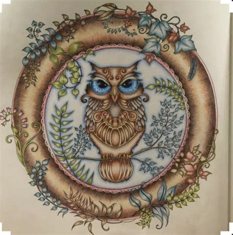 Enchanted Forest Coloring Card Bentuk Kartu top demais essa coruja gallery johanna basford