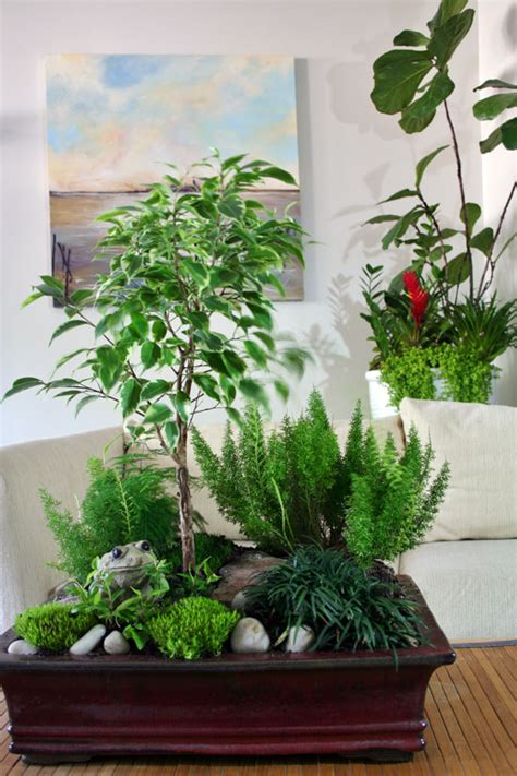 indoor plant arrangements combining houseplants for decorative arrangements