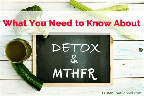 Mthfr And Detox Lyme Bite by Best 25 The Conversation Ideas On