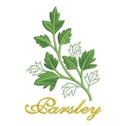 parsley pattern js parsley herbs embroidery designs machine embroidery