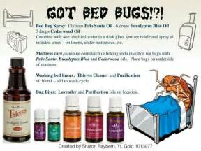 Bed Bugs Essential Oil Pinterest