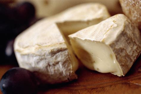 brie and camembert cheese overview