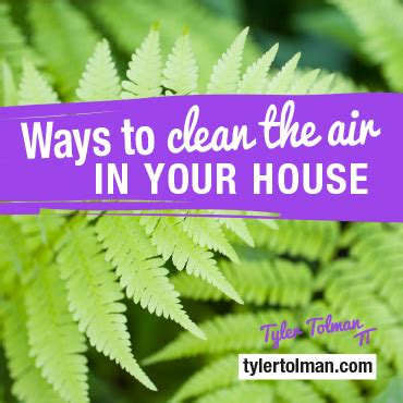 Http Www Tylertolman Health Articles Water Fasting Benefits Detox Cleanse by How Indoor Air Pollution Is You Sick