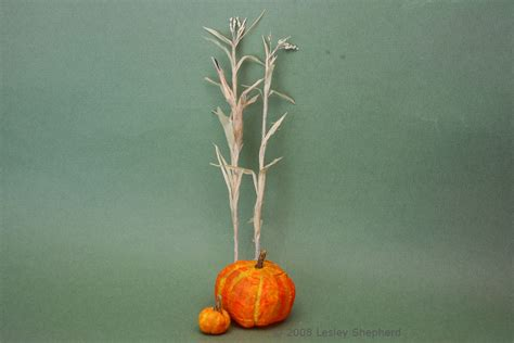 How To Make Paper Corn Stalks - step by step guide to make scale miniature corn stalks