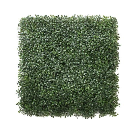 Artificial Boxwood Mat by Artificial Boxwood Mat 50cm X 50cm Uv Stabilized Indoor