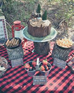 Playroom Ideas For Small Spaces by Lumberjack Logging Camp 1st Birthday Party Project Nursery