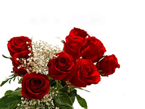 most beautiful images most beautiful roses and bouquet beautiful flowers