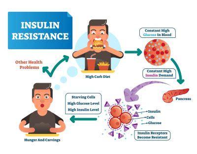 alimentazione per insulino resistenza dieta per insulino resistenza robertouliano it