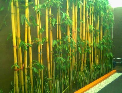 tanaman bambu hias  indonesia bibitbungacom