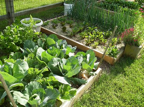 Make Vegetable Garden How To Create A Raised Bed Vegetable Garden The Poetic