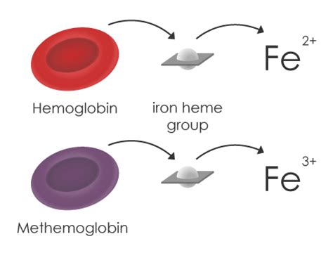 Color Of Oxygenated Blood by Illustrated Medicine Methemoglobinemia